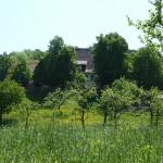 Schwaerzloch-Biergarten-05